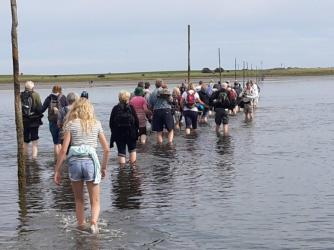 behind-shot-of-pilgrims-walking-the-causeway